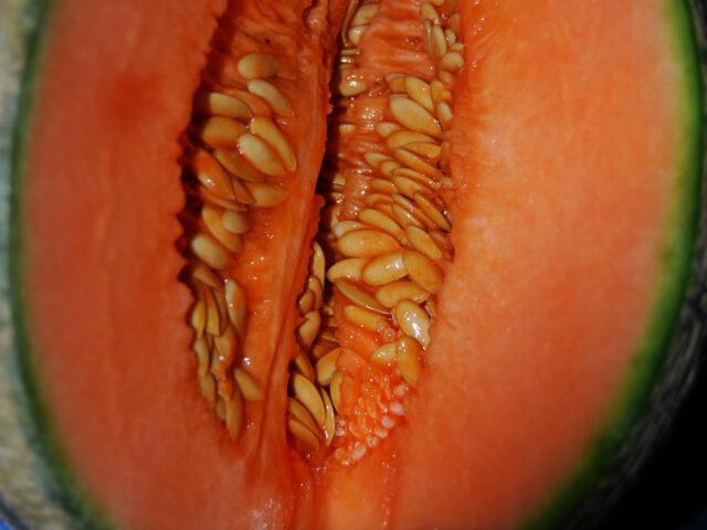 SOGNO: Bimba Melone